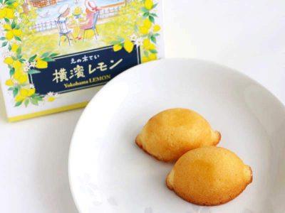 えの木てい 横濱レモン