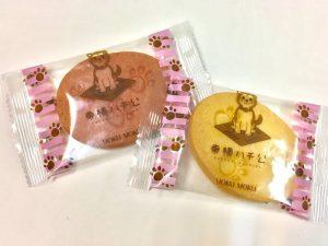 東横ハチ公クッキー開封した写真