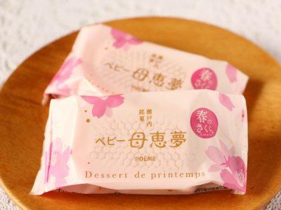 ベビー母恵夢 春の桜