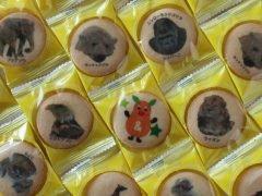 東山動植物園プリントクッキー