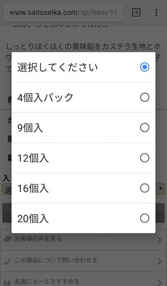さいとう製菓オンラインショップ 画面写真4